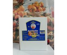 Succo Concentrato per Breakfast ACE (Arancia Carota Limone) Royal Drink