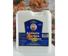 Succo Concentrato Breakfast Ace (arancia-carota-limone)  Royal Drink