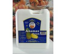 Succo Concentrato Breakfast Ananas Royal Drink
